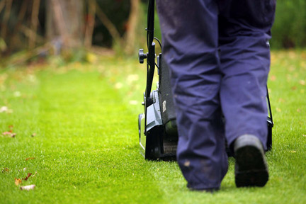 Lawn Care Knowledge